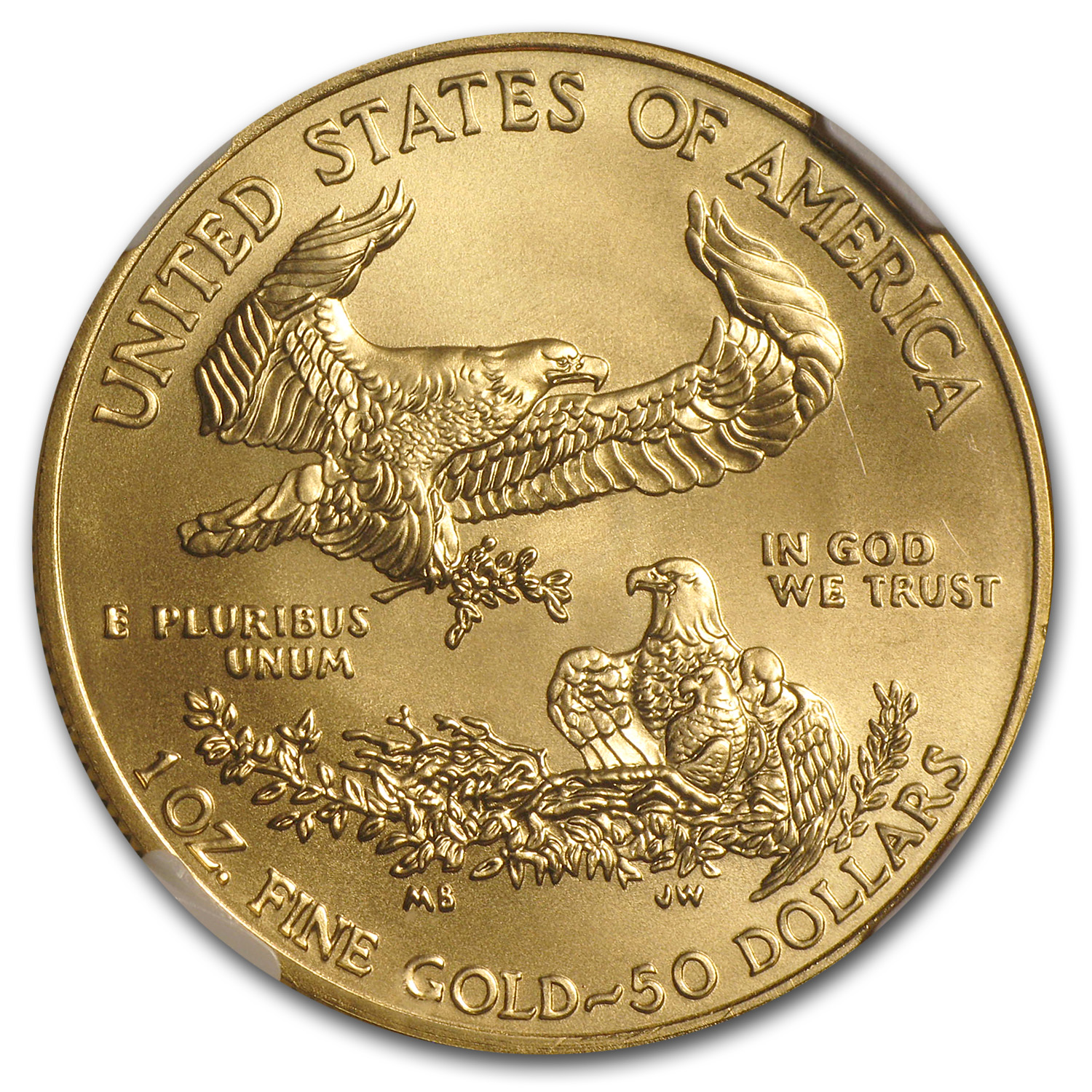 2009 1 oz Gold American Eagle MS-70 NGC (Early Releases)
